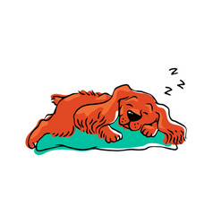 cute pet dog sleeping on a pillow hand drawn vector image