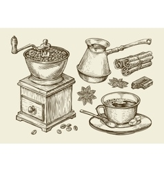 Hand drawn coffee grinder cup beans star anise vector