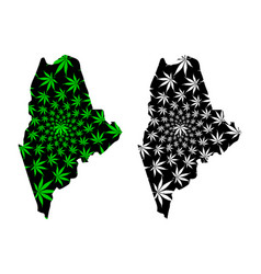 Maine - map is designed cannabis leaf vector