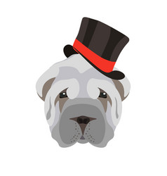 Sharpei dog head with black hat isolated on white vector