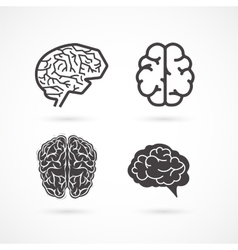 Brain - set of and icons vector image vector image