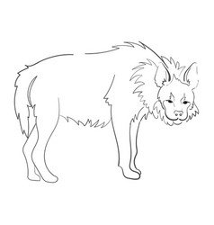 silhouette of a hyena stylized on a white vector image