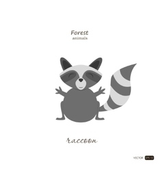 Raccoon in cartoon style on white background vector image vector image