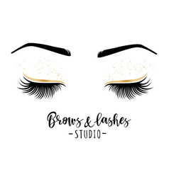 Brows and lashes studio vector