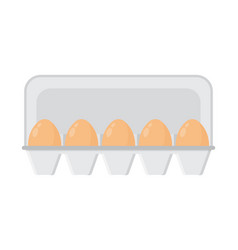 Chicken eggs in a tray vector