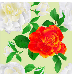 seamless texture white and orange roses with buds vector image