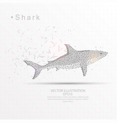 Shark digitally drawn low poly triangle wire vector