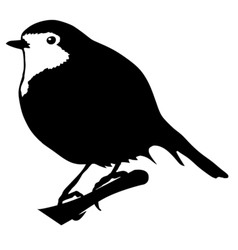 Silhouette of robin vector