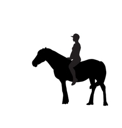 Silhouette of the Rider on the Horse vector