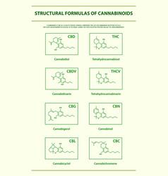 Structural formulas main natural cannabinoids vector