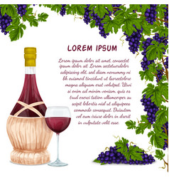 Wine jar and grape bunch background vector image