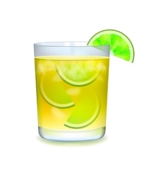 Citrus realistic cocktail vector image vector image
