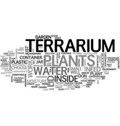 A terriarium as an indoor garden text word cloud vector