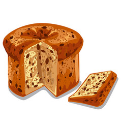 Baked panettone cake vector