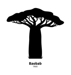 Black baobab tree silhouette vector