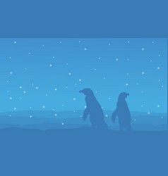 blue background with penguin scenery vector image