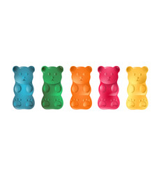 colorful gummy bears vector image