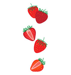 isolated strawberrys design colorful falling vector image