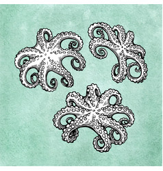 octopus set on old paper vector image