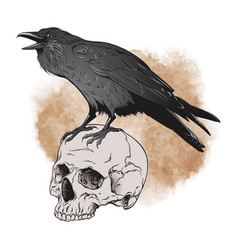 Raven and skull on sepia background vector