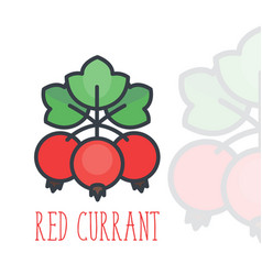 Red currant icon over white in flat style vector