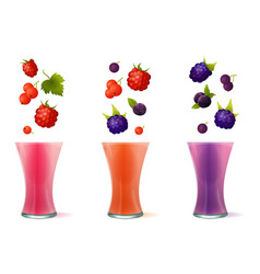 smoothie healthy berry drinks vector image