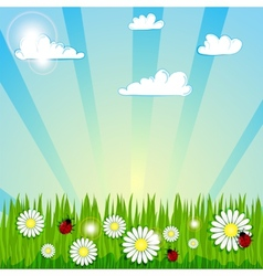 Spring summer background vector