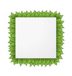 square leaves frame vector image