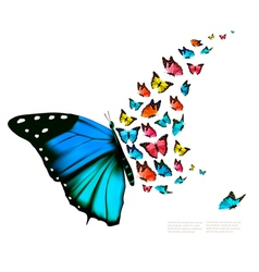 Beautiful butterfly background vector image vector image