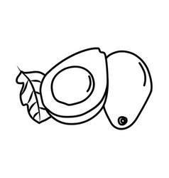 Avocado fruit icon design sign vector