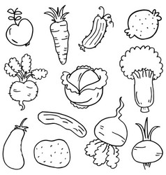 Doodle of vegetable collection hand draw vector