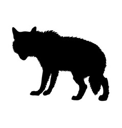 Gray wolf silhouette vector