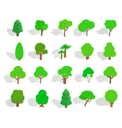 green tree icon set isometric style vector image
