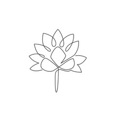 one continuous line drawing beauty fresh lotus vector image