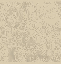 topographic map background concept with space vector image