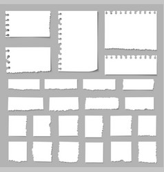 torn pieces paper paper scrapsripped papers vector image