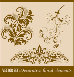 set of calligraphic and page decoration design vector image