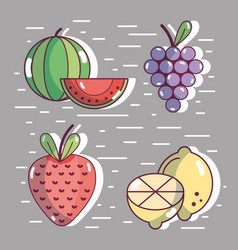 set healthy fresh fruit food vector image