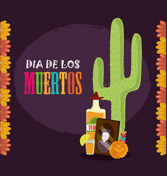 day dead photos frame tequila cactus vector image