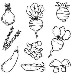Doodle of vegetable art vector