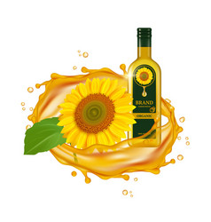 realistic sunflower oil oil drops and vector image