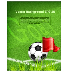 green playing field ball red flag goal vector image