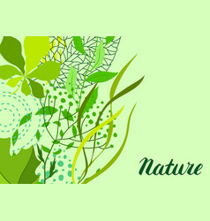background of stylized green leaves for greeting vector image
