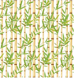 bamboo branches design vector image