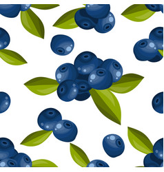 blueberry seamless pattern vector image