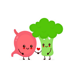 happy cute smiling stomach and broccoli vector image