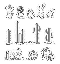 Cacti in the desert isolated objects vector