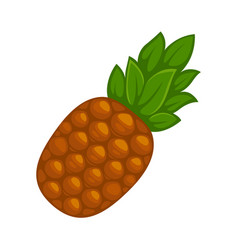 fresh whole pineapple vector image
