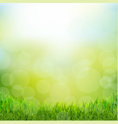 Natural background with grass border vector