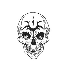 scary human skull with jaws or part skeleton vector image